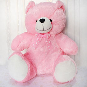 Pink & Cuddly - Soft Toys For Sister