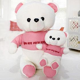Chhota Bada Teddy Bear - 50 cm - Soft Toys For Sister