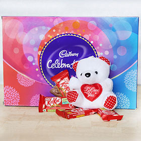 Cute Teddy With Choco