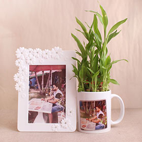 Lucky Plant with Personalized Gifts - Gifts For Brother Online