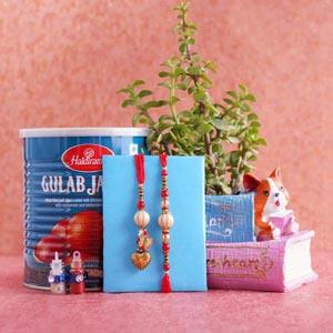 Bhaiya Bhabhi Rakhi with Jade Plant and Gulab Jamun