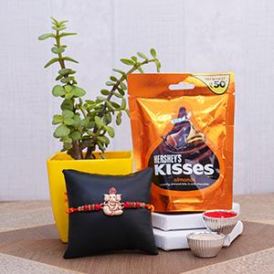 Designer Rakhi with Jade Plant and Kisses Chocolates - Zari Rakhi