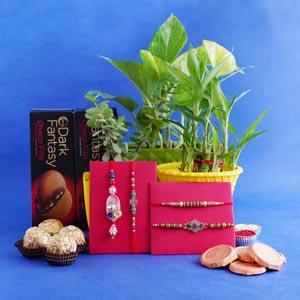 Three Brothers' and Lumba Rakhi with Plants Hamper