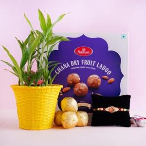Om Rakhi with Lucky Bamboo and Chana Laddoo