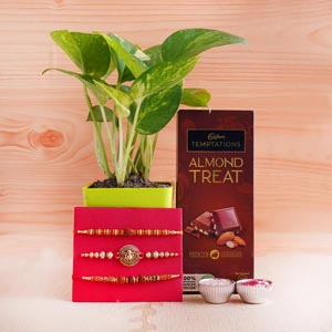 Three Auspicious Rakhis with Money Plant and Temptations