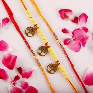 Sacred Rakhi Triple Set